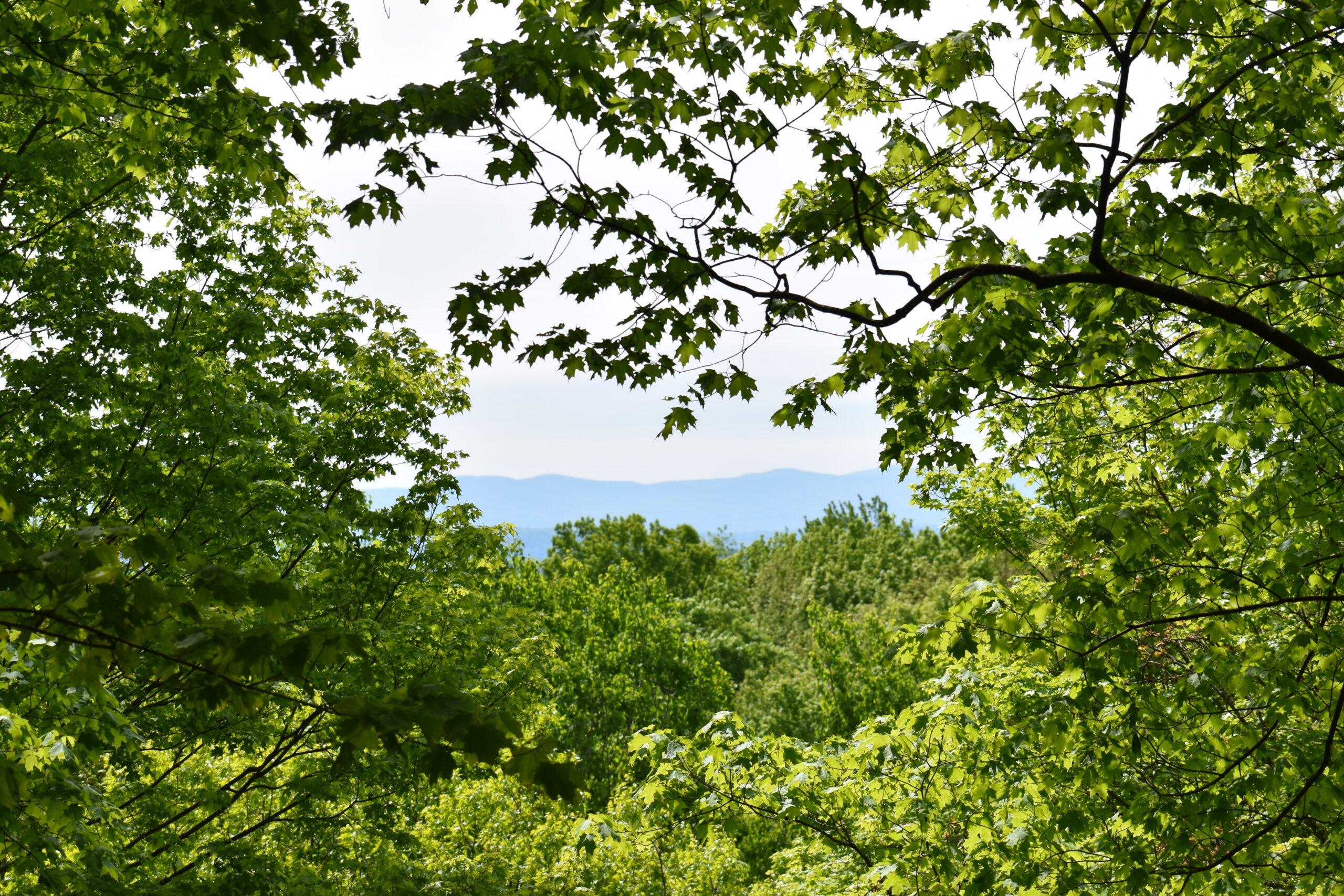 Columbia Land Conservancy